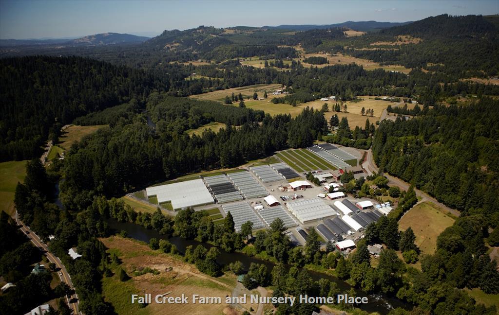 Fall Creek Farm Nursery