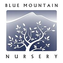 Blue Mountain Nursery LLC