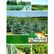 Windy Ridge Nursery