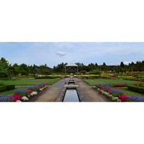 the oregon garden - The Oregon Garden